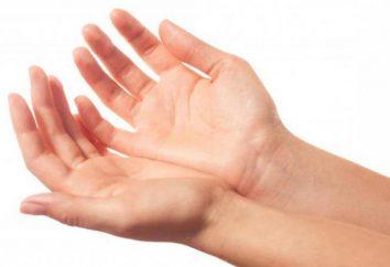 Skąd się wzięły nazwy palców rąk ludzkich?