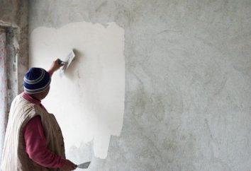 Acabado Predchistovaya – ¿qué es esto? Foto Predchistovaya terminar apartamentos