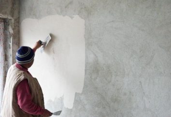 Acabamento Predchistovaya – o que é isso? Foto Predchistovaya terminando apartamentos