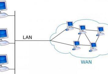 Porta WAN: Características e Configuração