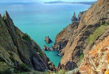 Reserve Karadag na Krymie. Flora i fauna rezerwatu Karadag