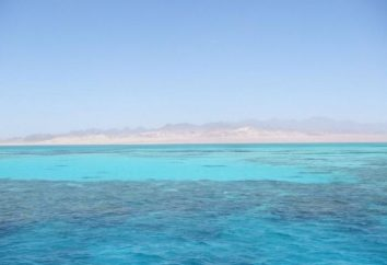Ägypten Meer: Rote und Mittelmeer
