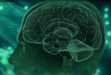 Los pacientes síndrome de hidrocefalia: cómo mejorar la situación?