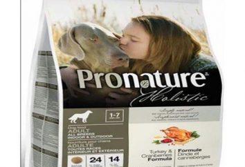 Qu'est-ce que pour nourrir votre animal de compagnie? Quelle est la nourriture holistique?