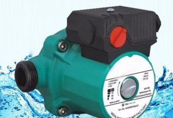 Una pompa di circolazione per acqua calda sanitaria: Descrizione e caratteristiche