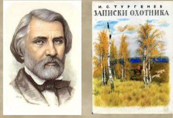 """""""Note di un cacciatore"""": qual è il tema principale della storia """"The Bear""""?"""