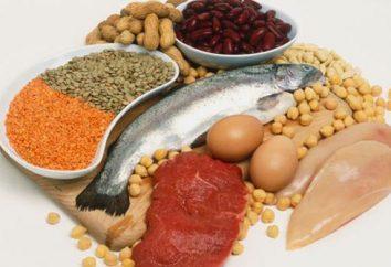 Białka: jakie pokarmy zawierające