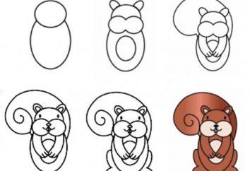 Warsztaty: jak narysować wiewiórkę w różnych stylach