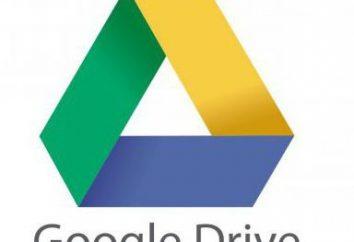 """""""Google"""" -Disc: cómo utilizar? La versión profesional"""
