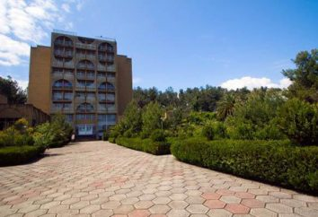 """""""Pine Grove"""", Abkhazie – avis. Hôtel """"Pine Grove"""" (Pitsunda, Abkhazie)"""