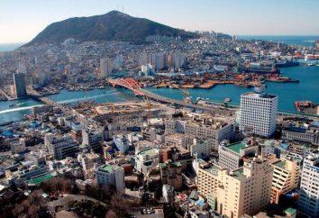 Co do odwiedzenia miejsc w Korei Południowej? Opis głównych miast w Korei Południowej