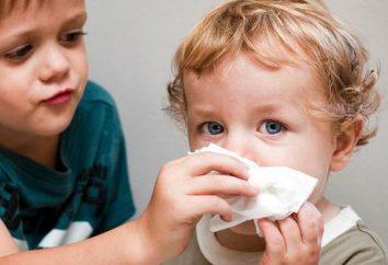Como ensinar as crianças a assoar o nariz? Como ensinar uma criança a assoar o nariz corretamente?