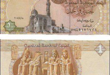 Libras egípcias: algumas dicas para turistas