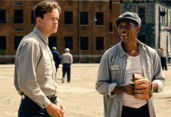 """""""Skazani na Shawshank"""": aktor, film na działce, zdjęcia, opinie"""