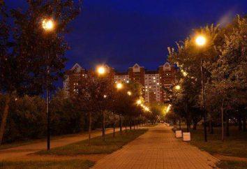 St. Petersburg, Apfelgarten. Parkanlage im Frunse Stadtteil St. Petersburg
