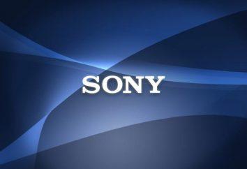 Sony e-book: caratteristiche, ubicazione, recensioni, foto