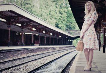 Dove acquistare viaggio sul treno e come risparmiare denaro con l'acquisto di viaggio