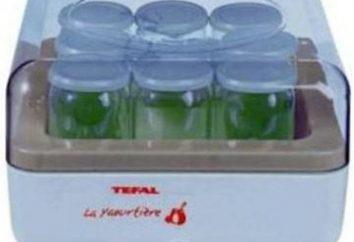 "Yogur ""Tefal"": alimentos frescos y sin conservantes"