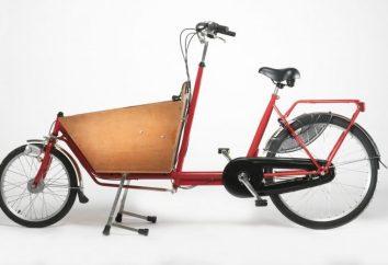 rowery cargo: wygodny transport dla małych firm i osób prywatnych