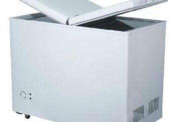 Autorefrigerator compressor – quais são suas características?