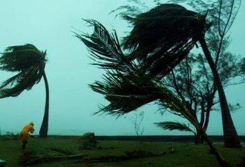 Fuerza del viento: Medición y utilización