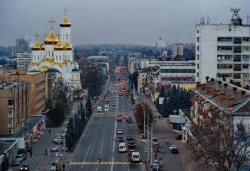 Bryansk: population, emploi