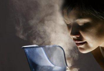 ¿Qué humidificador elegir? Comentarios. Humidificador de vapor. El mejor humidificador de aire