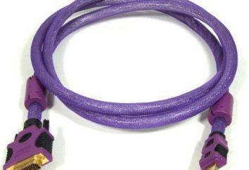 Adapter DVI-HDMI: opis celów, parametry techniczne urządzenia