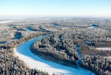 Natura i rezerwy KhMAO (Chanty-Mansi Autonomous Area): opis i ciekawostki