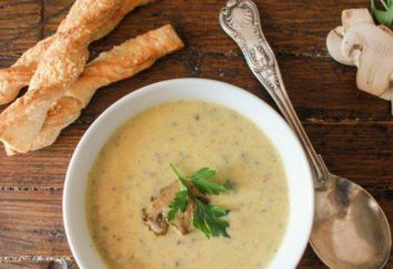 Jak ugotować zupę z kurczakiem, serem grzybów?