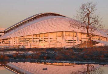 instalações olímpicas em Sochi – instalações da-arte