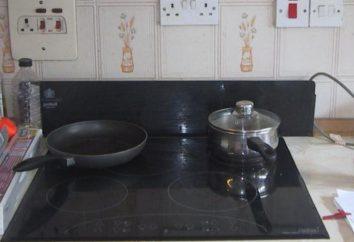 Supports pour plaques: installation photo. Quelle prise de choisir pour la table de cuisson? Qu'est-ce que la prise est nécessaire pour la table de cuisson?