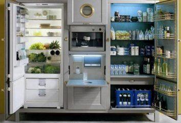 A escolha da geladeira – uma decisão difícil