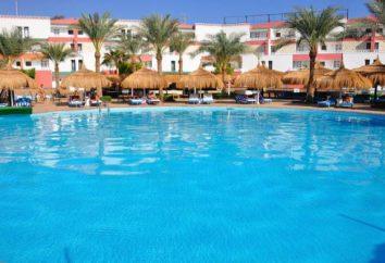 Hotels in Sharm el Sheikh 4 Sterne. Sharm El Sheikh Urlaub, Hotels, Preise