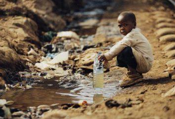 Les principaux problèmes environnementaux de l'Afrique