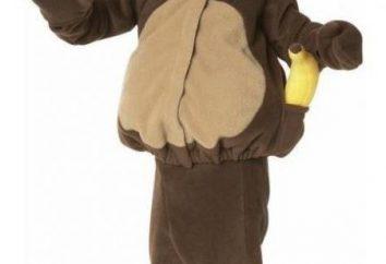 """terno de Ano Novo """"macaco"""" com suas próprias mãos: teste padrão, recomendações e descrição"""