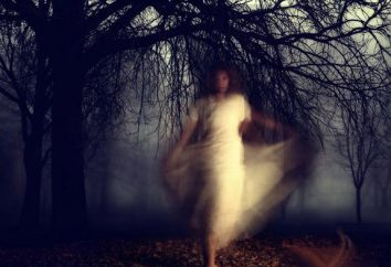 Wie die Geister rufen