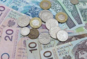 Zloty. Valuta in Polonia