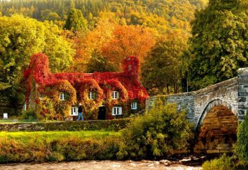 presagi ottobre. Folk presagi autunno