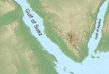 Zatoka Suez: opis, zdjęcie