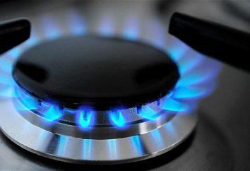 Wie für Gas über das Internet bezahlen? Was sind die Möglichkeiten?
