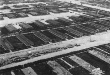 El campo de concentración Majdanek. Campos de concentración fascistas