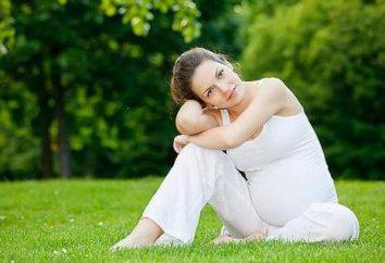Sport für Schwangere zu Hause. Sport für Schwangere