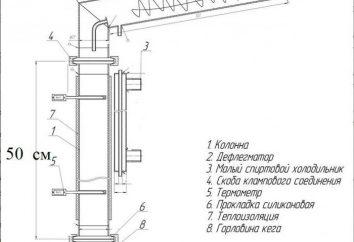 Kolumna Brazhnye rękoma: rysunki, instrukcje
