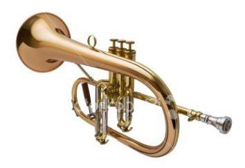 instrument dęty, różnorodność
