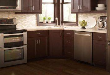 Las estufas eléctricas (vitrocerámica) para la cocina: cómo elegir, opiniones