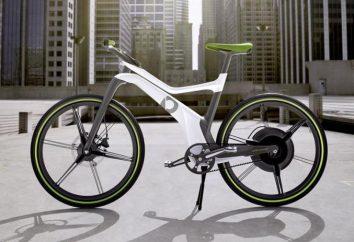 Liczba właściciele rowerów elektrycznych. doświadczenie operacyjne