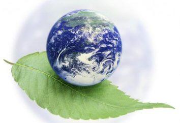 fattore ambientale – è … l'ecologia e la gente. Tipi di fattori ambientali. Classificazione dei fattori ambientali