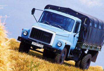 Tout à propos de GAZ 3306
