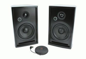 Co jest głośnik bezprzewodowy?